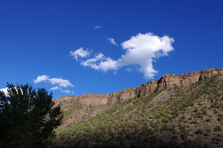 In the canyon of the Rio Grande