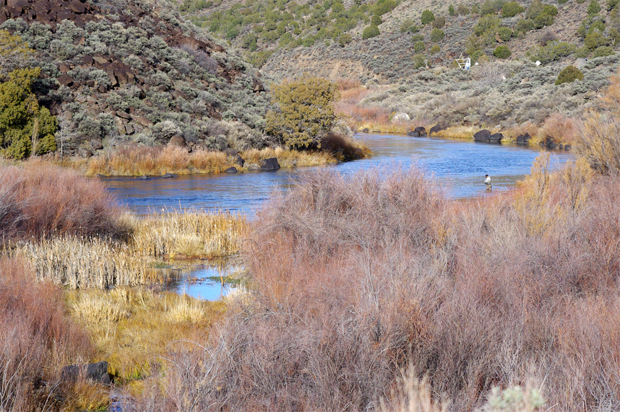 Rio Grande near Pilar, NM