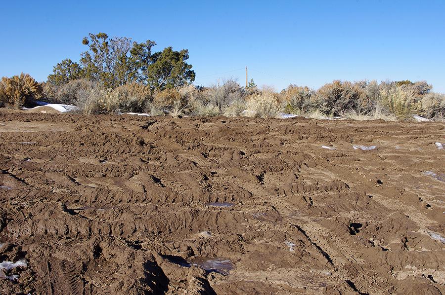 muddy Taos road