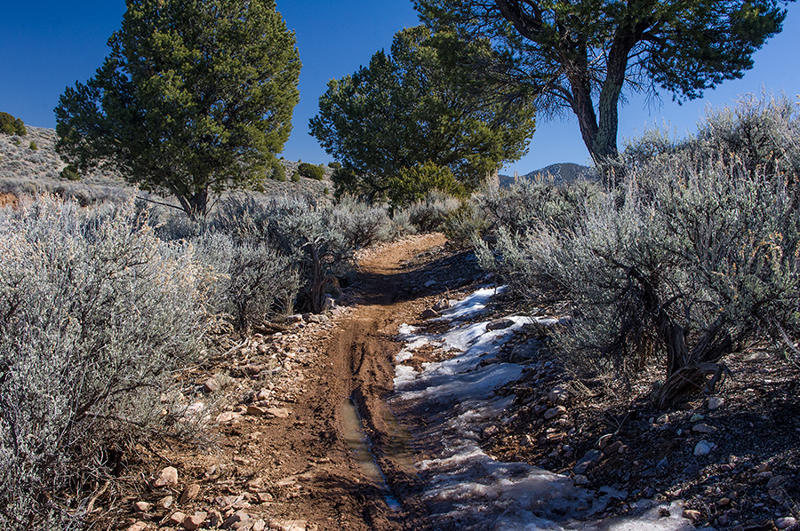 trail at Taos Valley Overlook