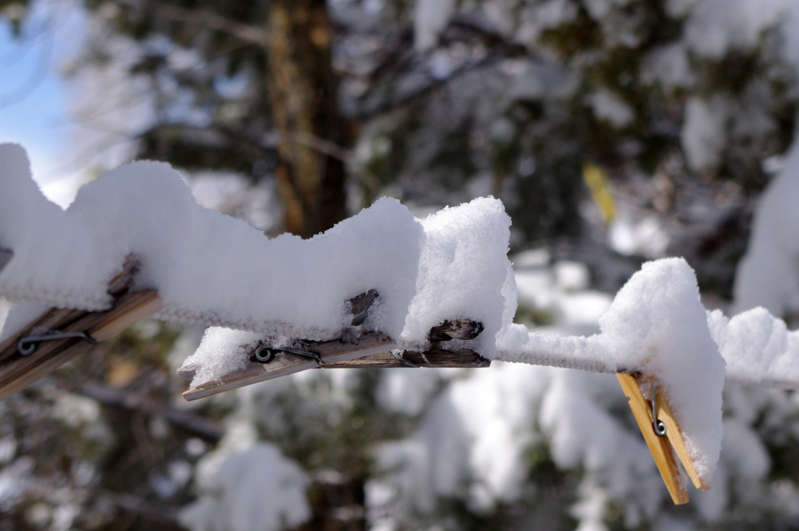 snowy clothespins