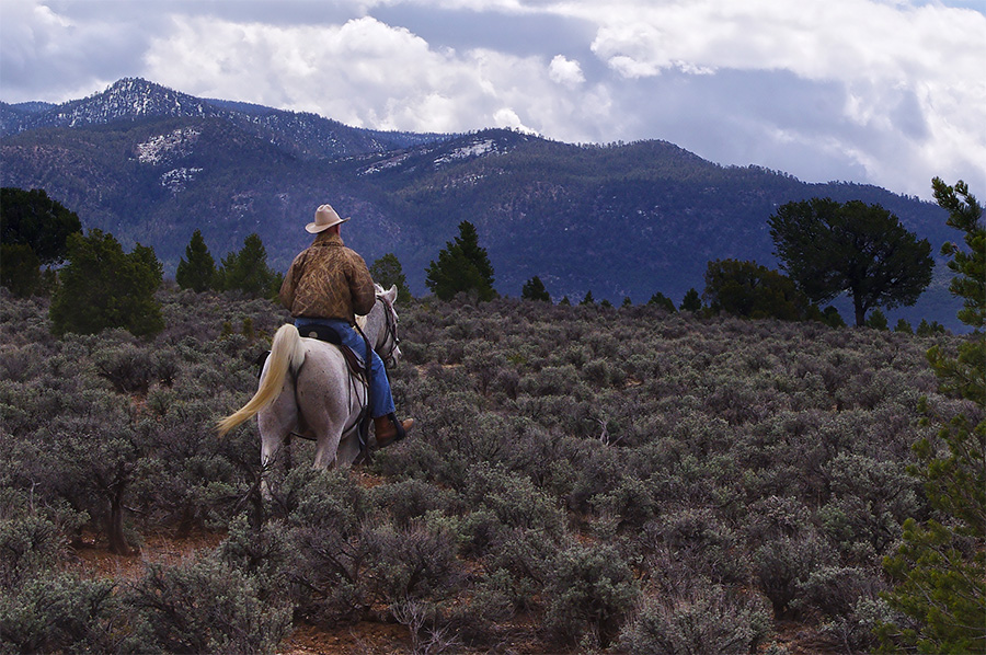 cowboy on horse at Taos Valley Overlook
