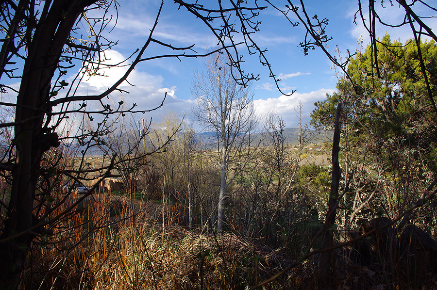 spring in Taos, NM
