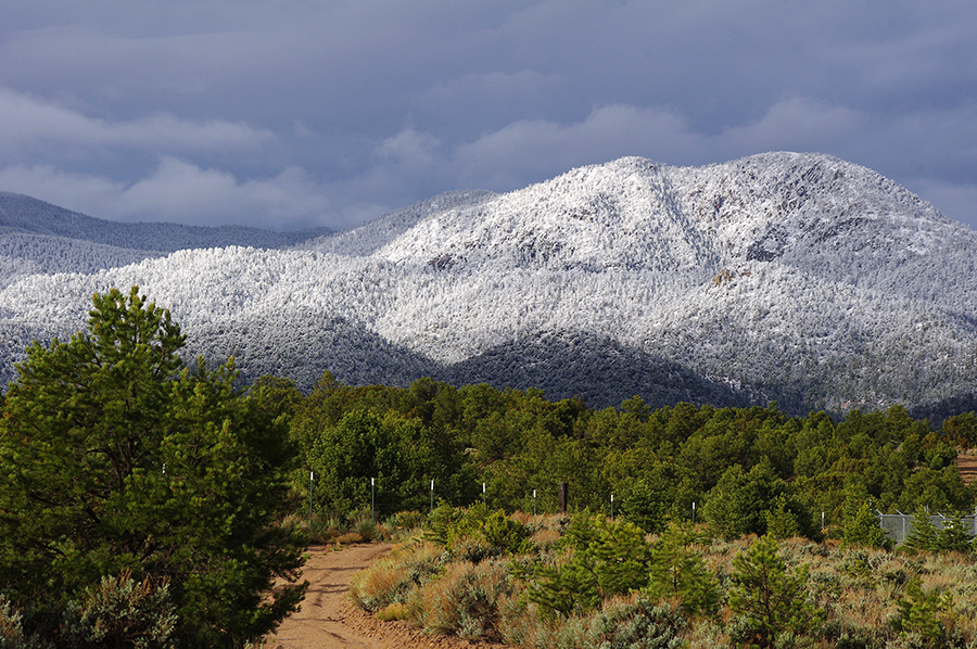 snow line photo south of Taos