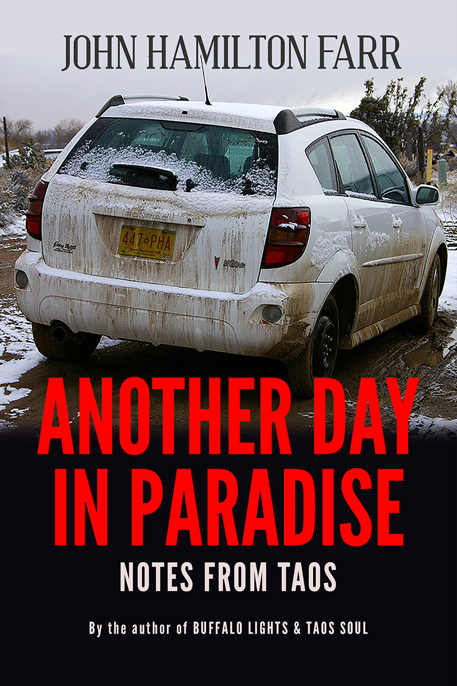ANOTHER DAY IN PARADISE book cover