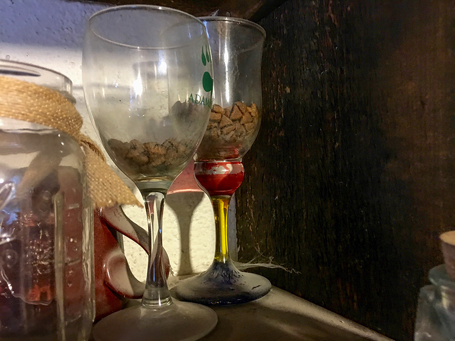 pack rat food caches in old wine glasses