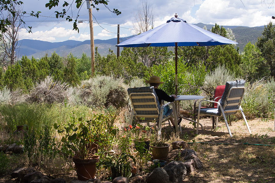 back yard in Taos, NM