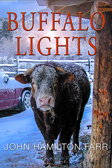 BUFFALO LIGHTS: Tales From an American Journey