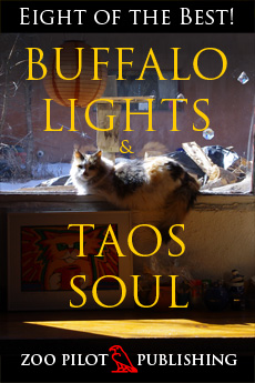BUFFALO LIGHTS & TAOS SOUL