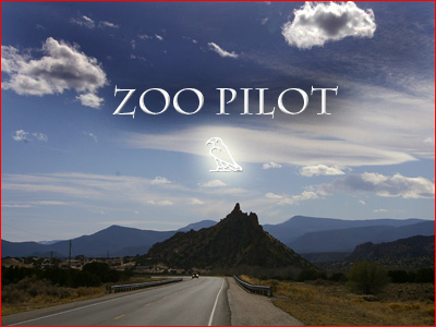 Zoo Pilot Design post image