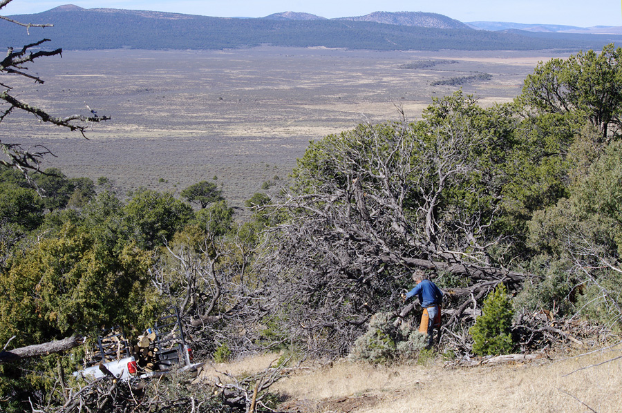 woodcutter on a mountain in northern Taos County