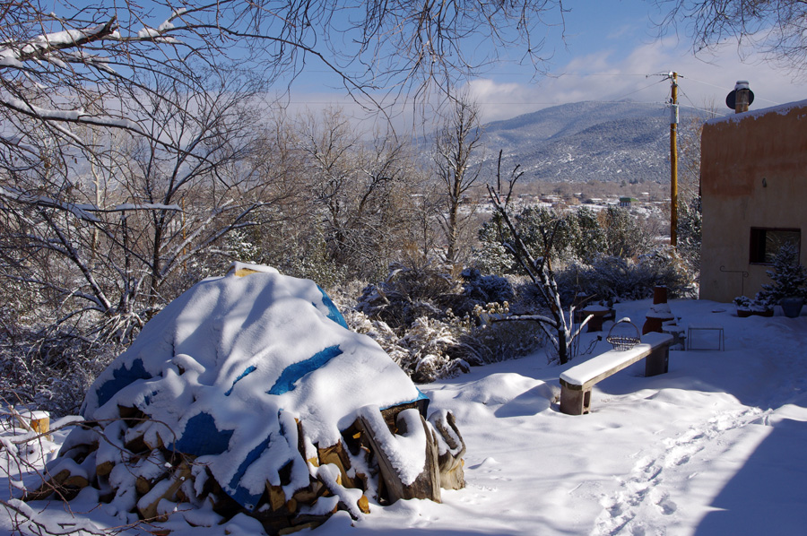 woodpile in the snow