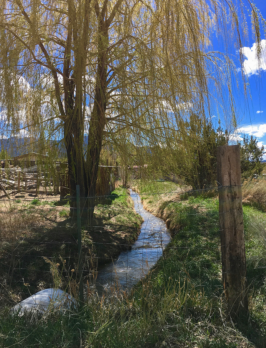 acequia in Taos, NM