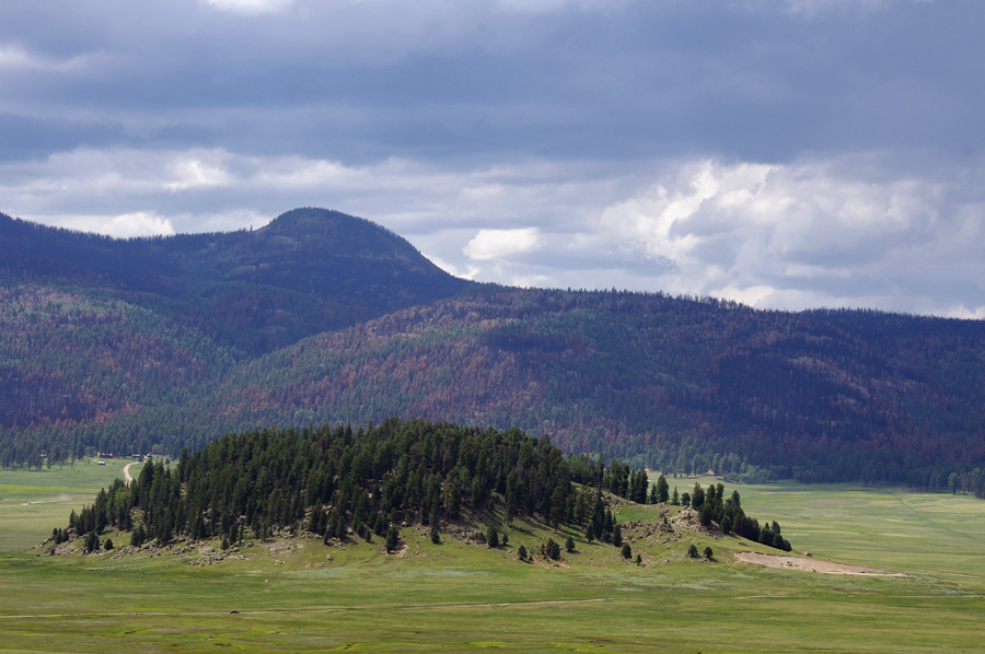 small portion of the Valles Caldera
